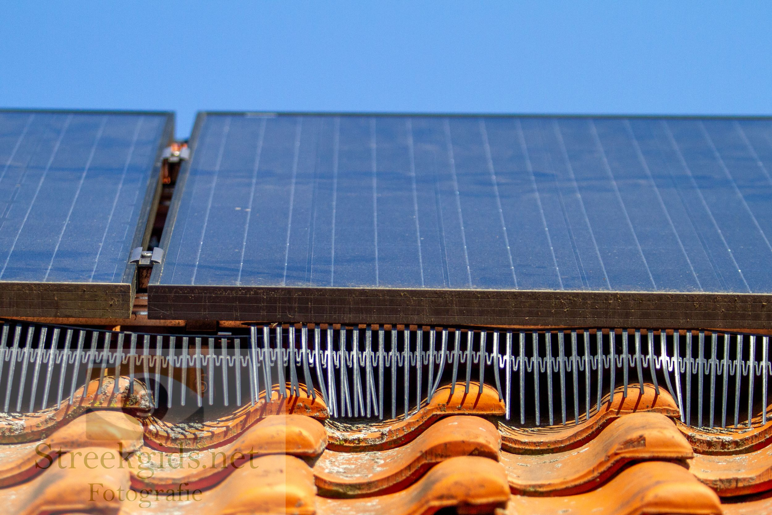 Roosters zonnepanelen
